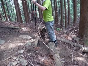 登る時のポール使い