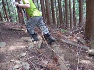 登る時のポール使い2